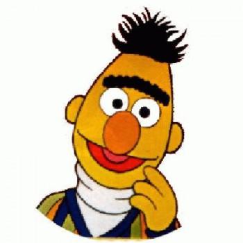 SESAME STREET - Bert