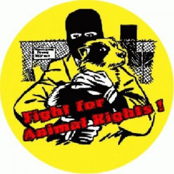 PUNKROCK - Fight for Animal Rights