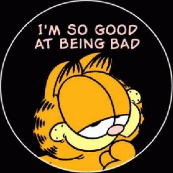 FUN - IŽm so good at being bad