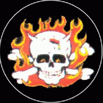 PUNKROCK - Skull in flames