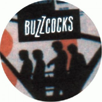 BUZZCOCKS - Pic