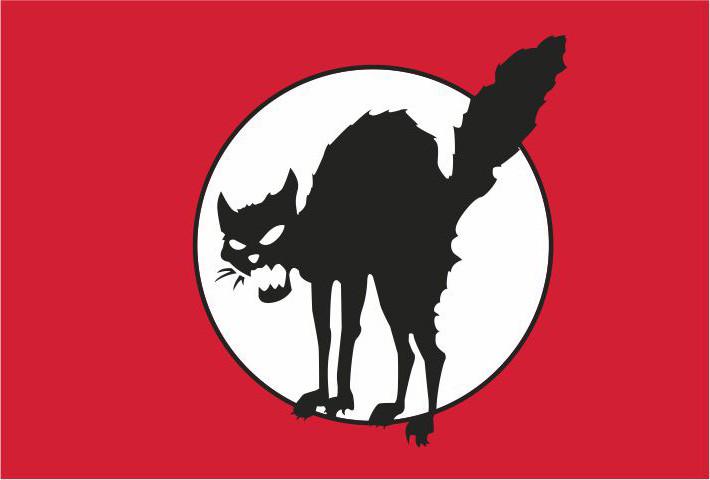 ANARCHOCAT FLAG