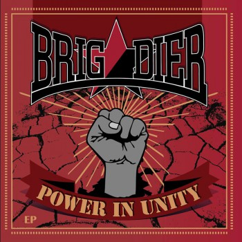 BRIGADIER POWER IN UNITY EP VINYL ROT