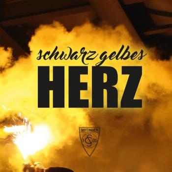SCHWARZ GELBES HERZ EP