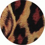 PUNKROCK - Tiger