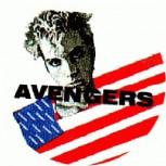 AVENGERS - USA