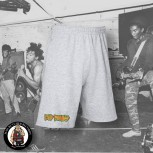 BAD BRAINS LOGO SMALL SHORTS L / GRAU